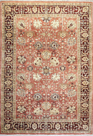 light traditional area rug